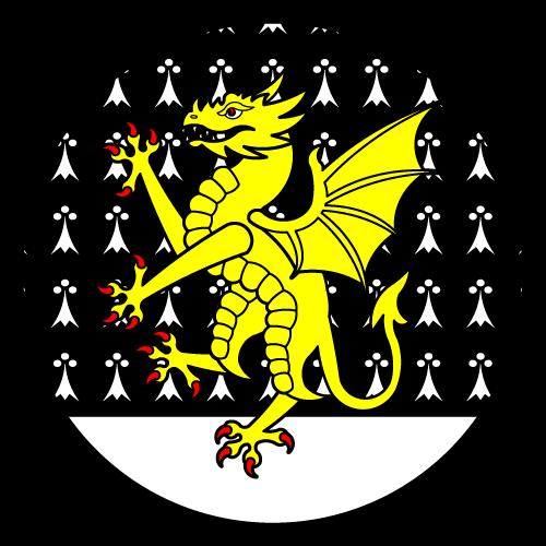 VOID Badge